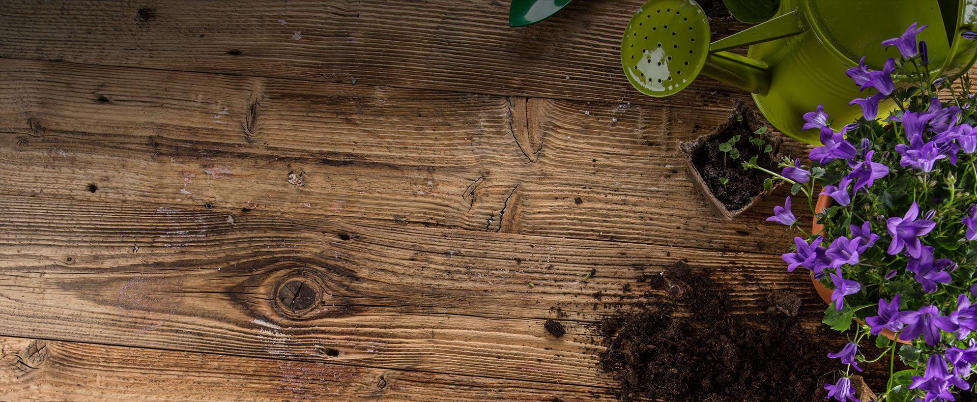 betonowe drewno ogrodowe